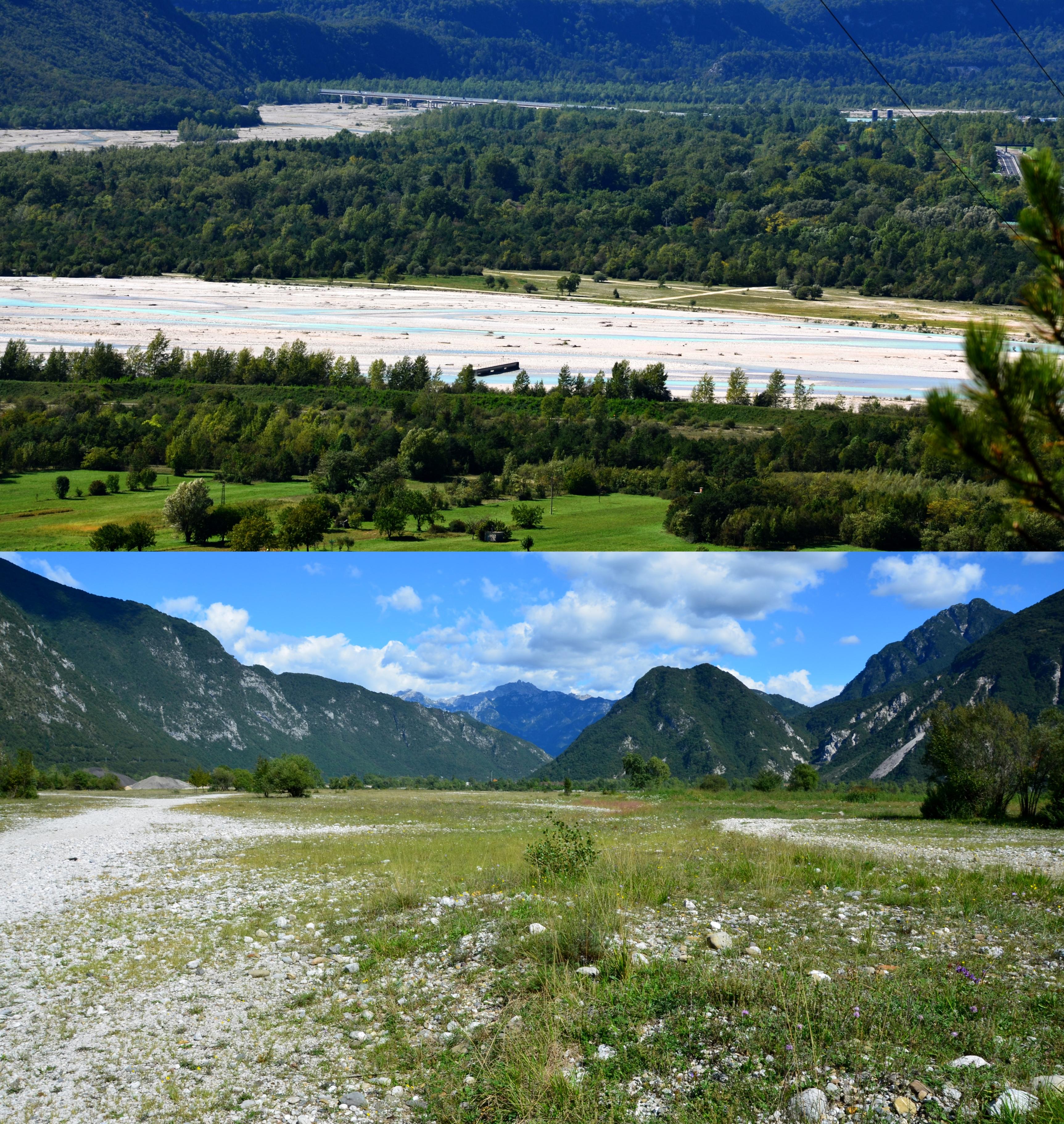 Štěrkoviště řeky Tagliamento vokolí Portis (provincie Udine, Itálie), (Foto: K.K.)