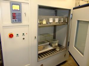 chov důlních cvrčků v klimaboxu/rearing of mine crickets in climatic chamber